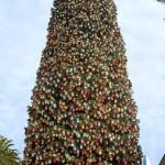 gal_tree_02